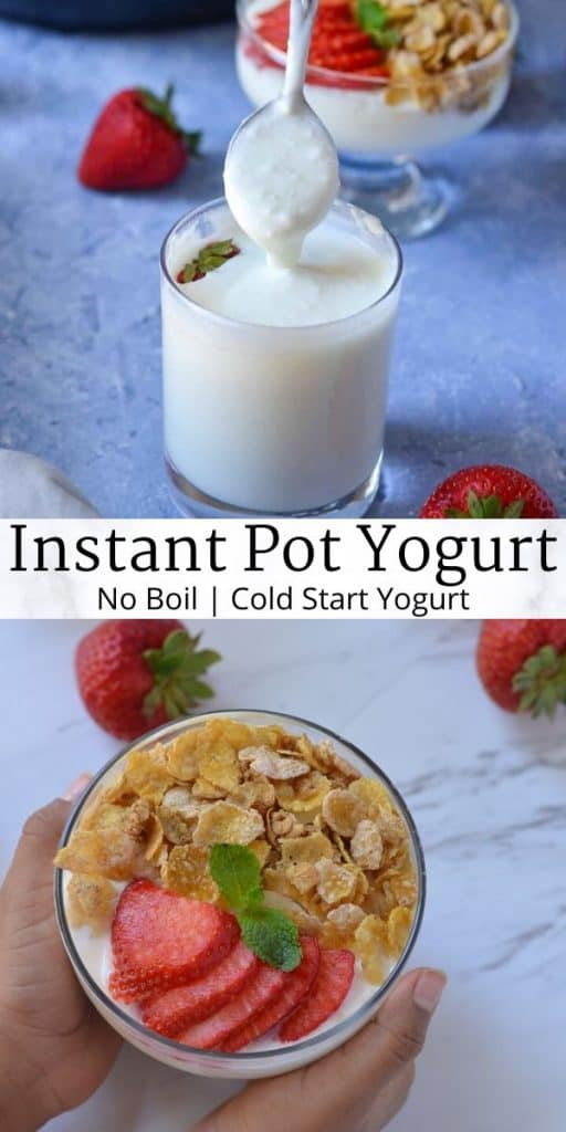 homemade instant pot yogurt cold start