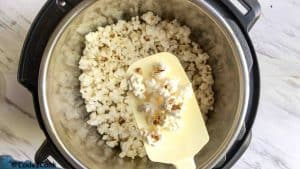 cooked popcorn in instant pot