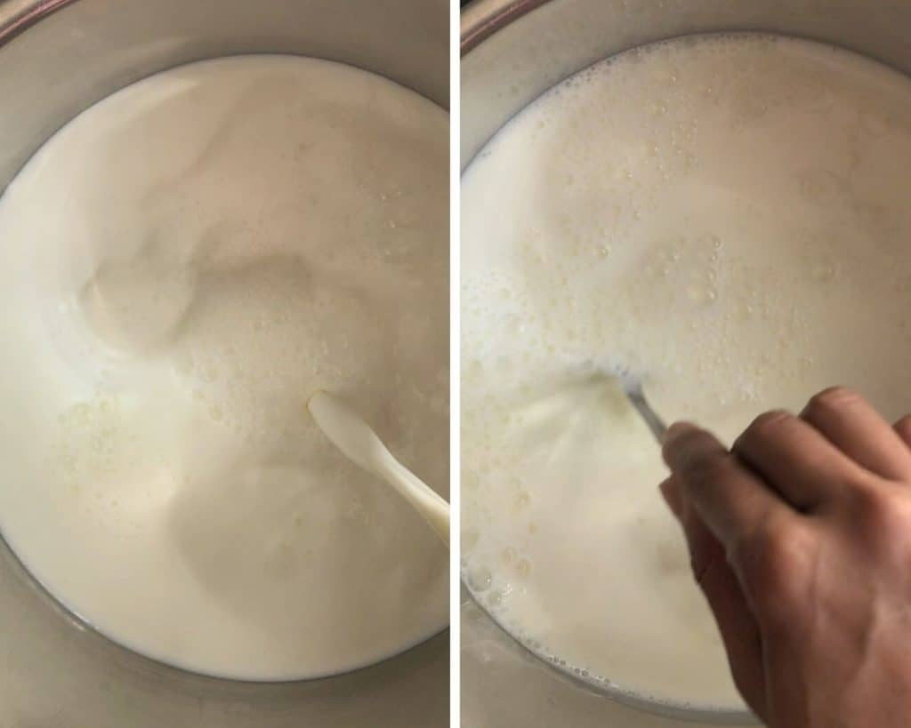 milk & starter mixed together in instant pot